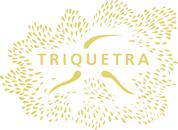 Triquetra Logo